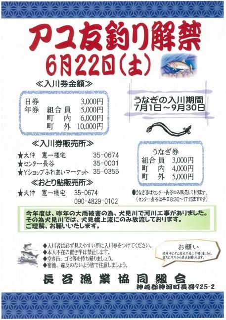 アユ友釣り解禁(長谷漁業協同組合)