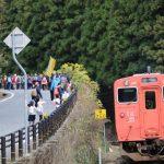 第6回 | 紅葉ウォーキング&長谷駅フォトコンテスト